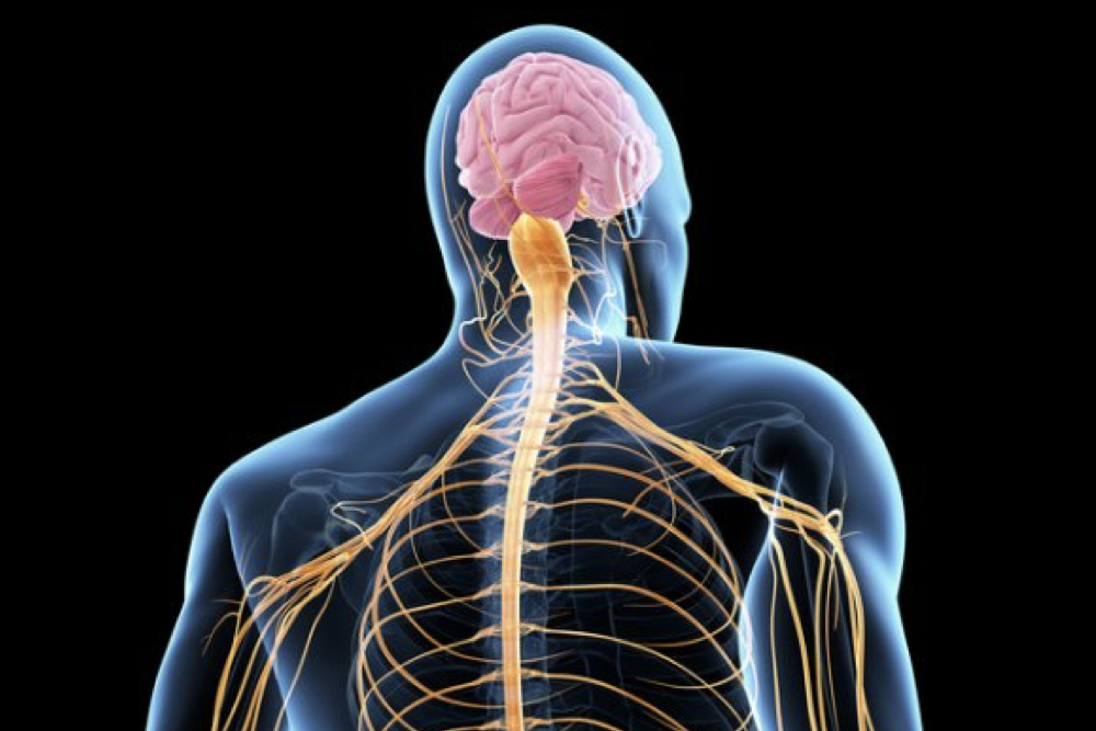 Suffering from acute or chronic neck pain ? Contact us now, we can help!